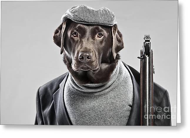 Gun Dog Greeting Card by Justin Paget