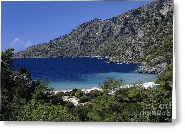 Pinus Resinosa Greeting Cards - Gungormez Limani Bay Turkey Greeting Card by Craig Lovell