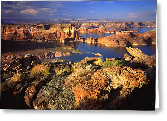 Glen Canyon National Recreation Area Greeting Cards - Gunsight Bay Greeting Card by Ray Mathis