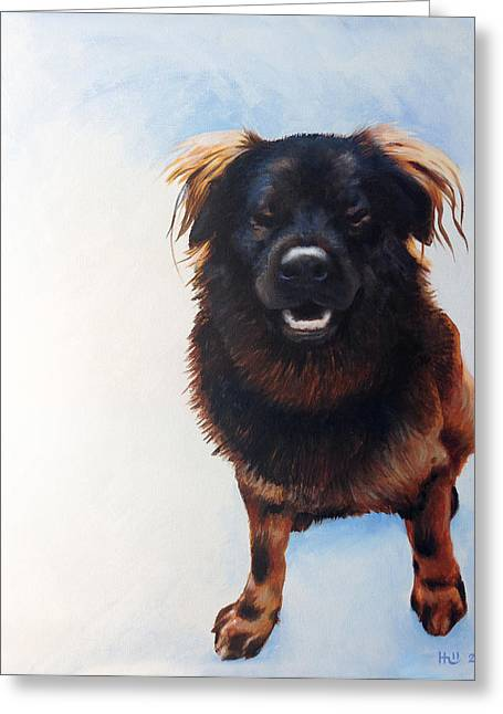 Gus Greeting Card by Kevin Hill