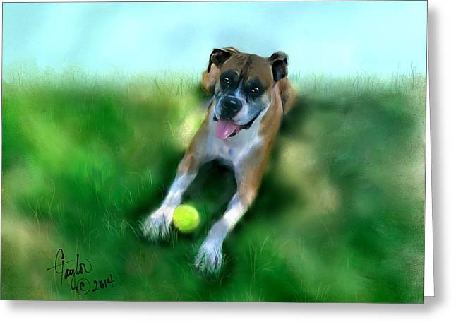 Dog Playing Ball Greeting Cards - Gus the Rescue Dog Greeting Card by Colleen Taylor