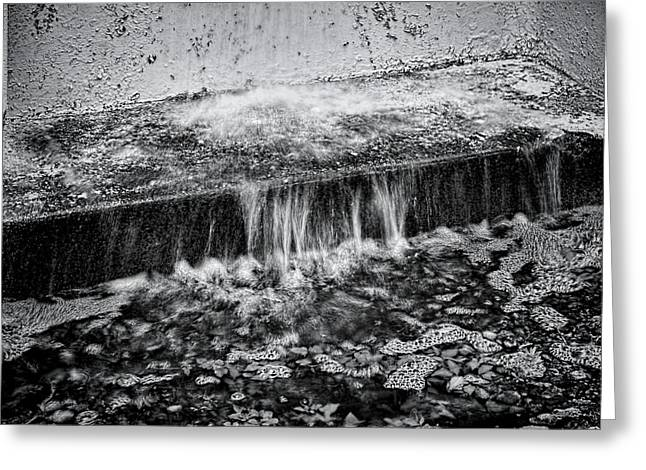 Gutter In Bw Greeting Card by Rudy Umans