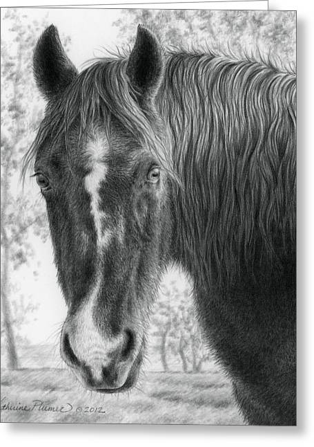 Draft Horse Greeting Cards - Gwen in the Late Fall Greeting Card by Katherine Plumer