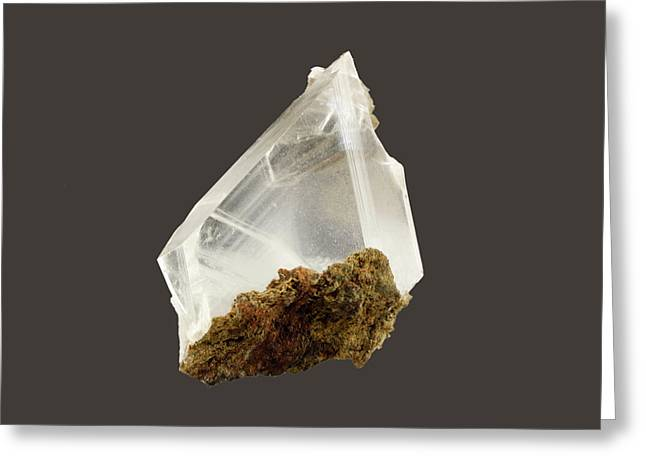 Gypsum Crystals Greeting Card by Science Stock Photography