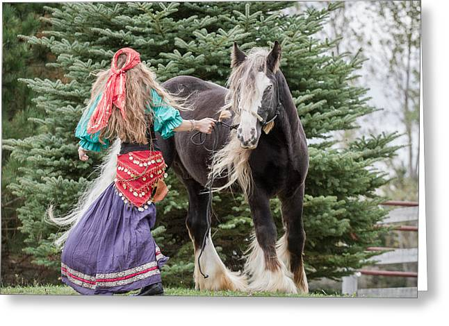 Gypsy Greeting Cards - Gypsy Vanner Dance Greeting Card by Toni Thomas
