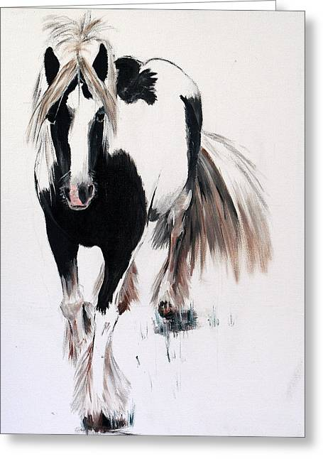 Gypsy Paintings Greeting Cards - Gypsy Vanner Greeting Card by Isabella Abbie Shores