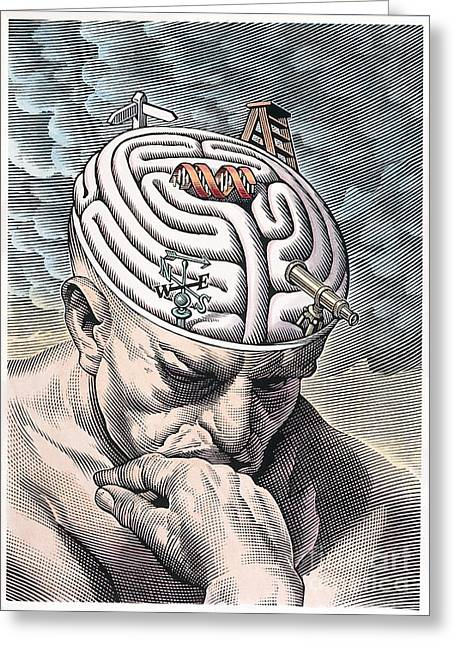 Wind Vane Greeting Cards - Gyri of Thinkers Brain as Maze of Choices Greeting Card by Wellcome Images