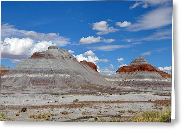Petrified Forest National Park Greeting Cards - Petrified Forest National Park Greeting Card by Nomad Art And  Design