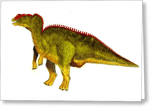 Hadrosaurus Greeting Card by Michael Vigliotti