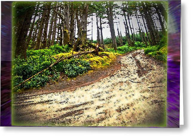 Charlotte Digital Art Greeting Cards - Haida Gwaii Woodland Road Greeting Card by Monzo Rock