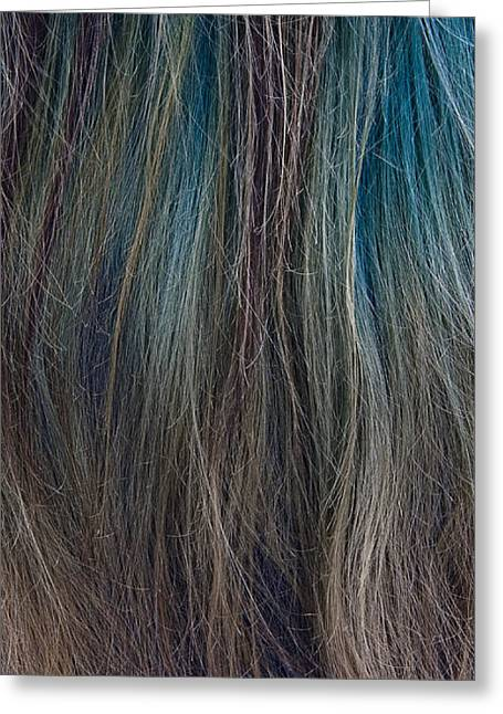 Blue Hair Greeting Cards - Hair Color Greeting Card by Murray Bloom