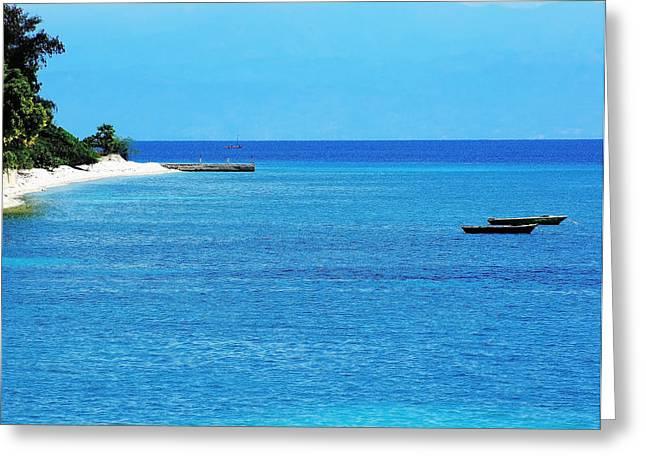Mango Greeting Cards - Haiti Blue Greeting Card by B Wayne Mullins