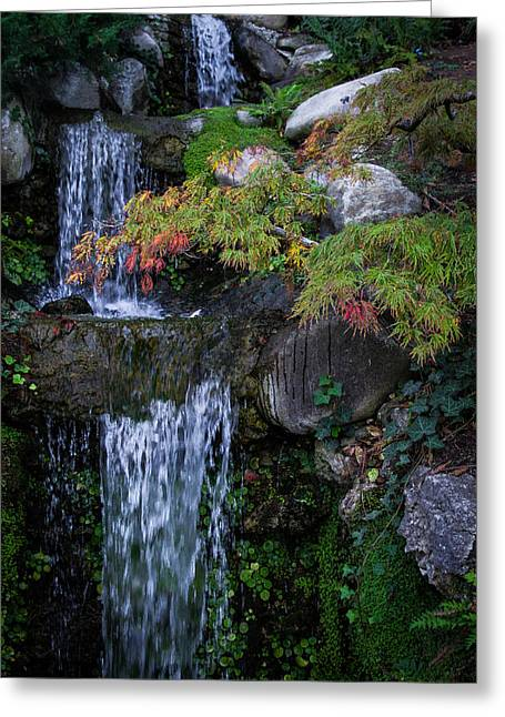Dayne Greeting Cards - Hakone Falls Greeting Card by Dayne Reast