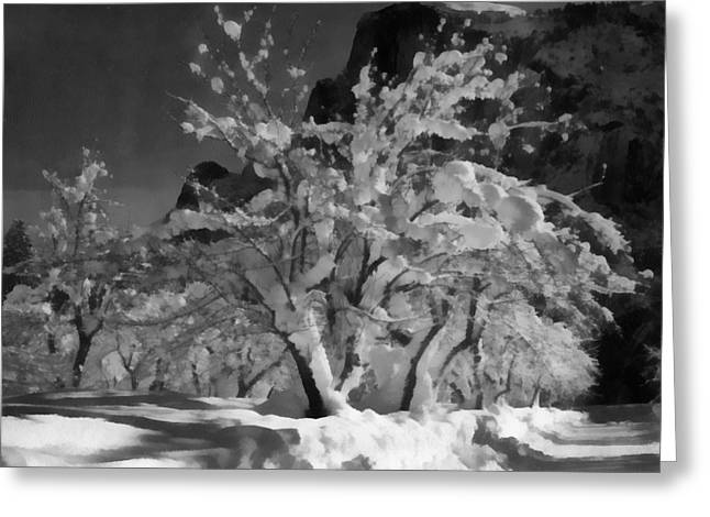 White River Scene Digital Art Greeting Cards - Half Dome Apple Orchard Greeting Card by Ansel Adams