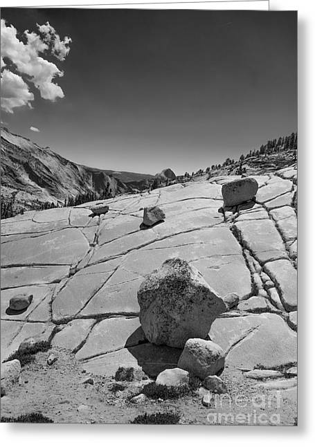 Terry Garvin Greeting Cards - Half Dome from Olmsted Point Greeting Card by Terry Garvin
