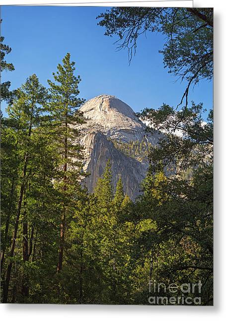 Domes Greeting Cards - Half Dome Yosemite Greeting Card by Jane Rix