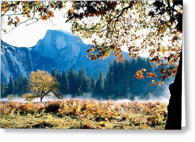Half Dome Greeting Cards - Half Dome, Yosemite National Park Greeting Card by Panoramic Images