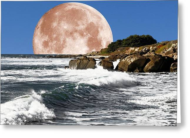 Half Moon Bay Greeting Cards - Half Moon Bay Greeting Card by Scott Hill
