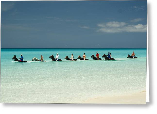 Horse Herd Greeting Cards - Half Moon Cay Bahamas beach scene Greeting Card by David Smith