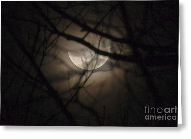 Jonathan Welch Greeting Cards - Half Moon Greeting Card by Jonathan Welch