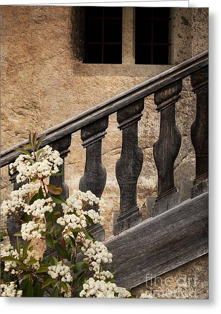 Stair-rail Greeting Cards - Halfway Down Greeting Card by Heiko Koehrer-Wagner