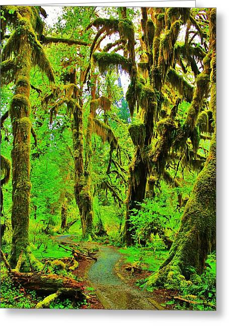 Lush Green Greeting Cards - Hall of Moss Greeting Card by Benjamin Yeager
