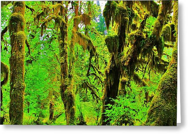 Hall of Moss Greeting Card by Benjamin Yeager