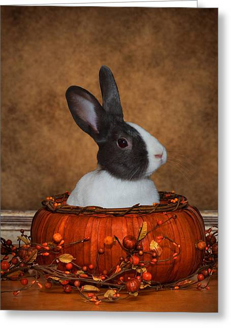 Halloween Greeting Cards - Halloween Bunny Greeting Card by Diane Bell