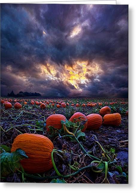 Halloween Is Near Greeting Card by Phil Koch