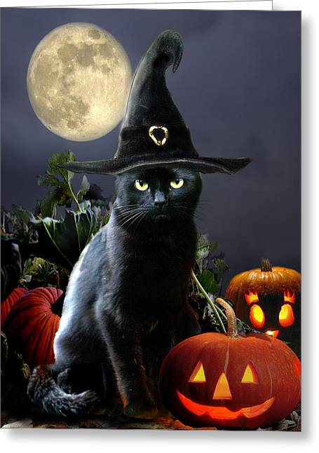 Pumpkins Paintings Greeting Cards - Witchy black Halloween Cat Greeting Card by Gina Femrite