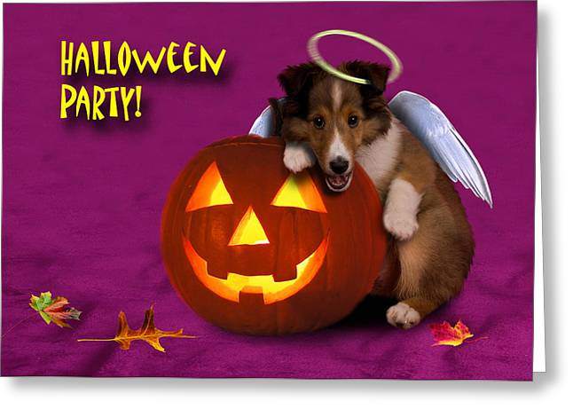Halloween Party Angel Sheltie Puppy Greeting Card by Jeanette K