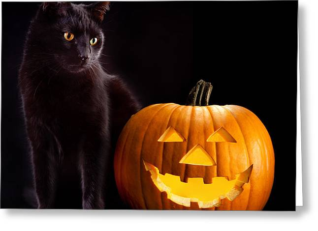 Evil Eyes Greeting Cards - Halloween Pumpkin And Cat Greeting Card by Dirk Ercken