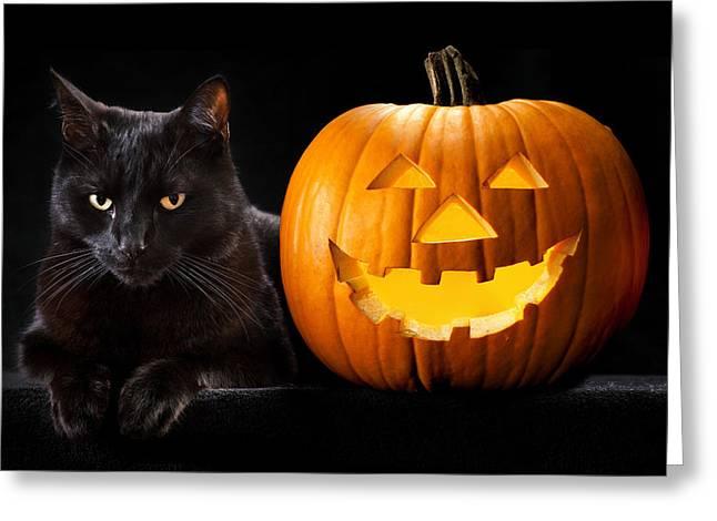 Creepy Cat Greeting Cards - Halloween pumpkin black cat Greeting Card by Dirk Ercken