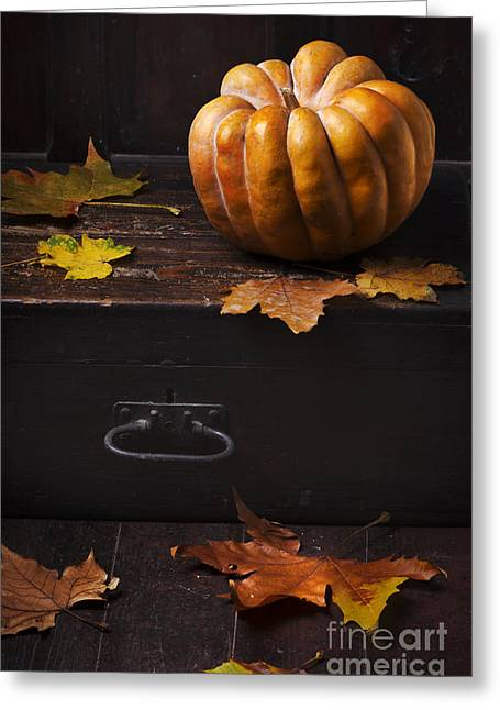 Fall Pyrography Greeting Cards - Halloween Pumpkin Greeting Card by Jelena Jovanovic