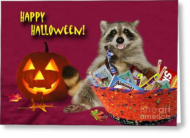 Halloween Raccoon Greeting Card by Jeanette K