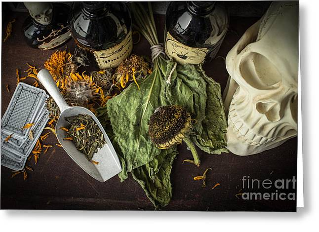 Witch Greeting Cards - Halloween Still Life Greeting Card by Edward Fielding