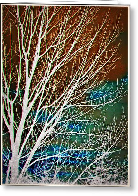 Hallucination Greeting Cards - Hallucinations Greeting Card by Donna Brown