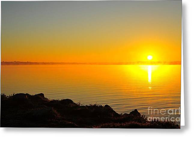Twilight Greeting Cards - Halo at Dawn Greeting Card by Terri Gostola
