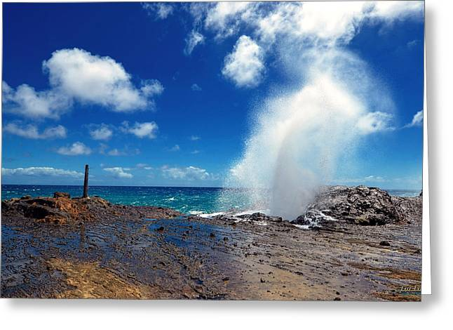 Halona Greeting Cards - Halona Blowhole Misty Geyser Greeting Card by Eric Evans