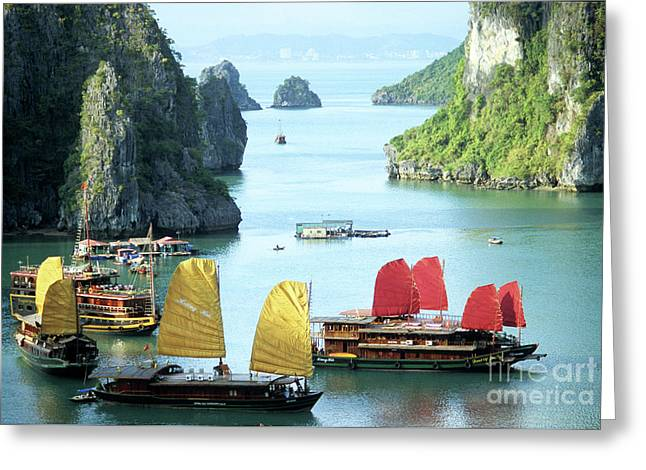 South-east Greeting Cards - Halong Bay Sails 01 Greeting Card by Rick Piper Photography