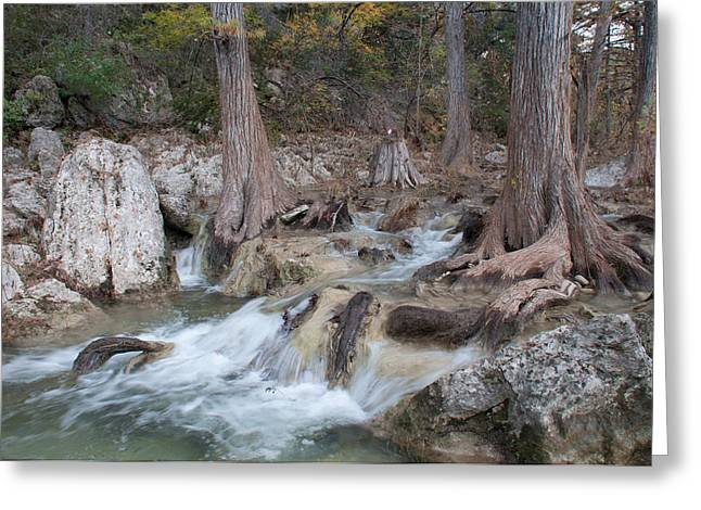 Hamilton Pool Texas Greeting Cards - Hamilton Pools Trail 1 Greeting Card by Hrayr Galoyan