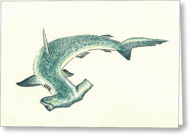 Hammerhead Sharks Greeting Cards - Hammerhead Shark Greeting Card by Michael Vigliotti