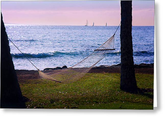 Ocean Sailing Greeting Cards - Hammock in Paradise Greeting Card by Camille Lopez