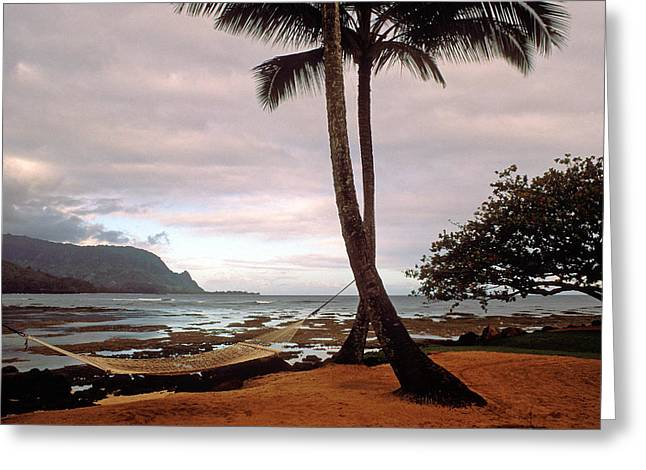 Landscape Framed Prints Greeting Cards - Hanalei Bay Hammock at Dawn Greeting Card by Kathy Yates