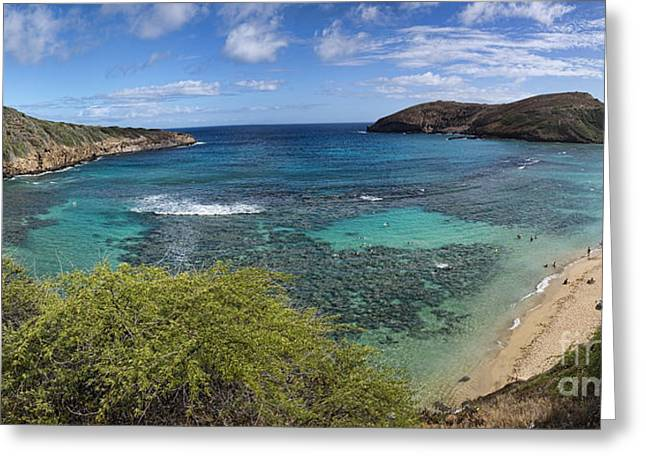 Snorkel Greeting Cards - Hanauma Bay Panorama Greeting Card by David Smith