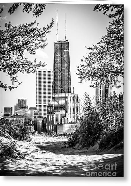 2012 Greeting Cards - Hancock Building Through Trees Black and White Photo Greeting Card by Paul Velgos