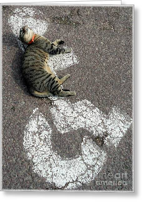 Moggy Greeting Cards - Handicat Parking Greeting Card by Barbie Corbett-Newmin