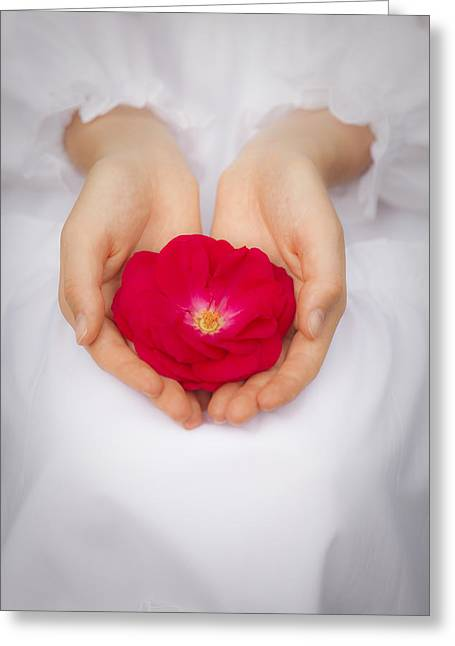 Sit-ins Greeting Cards - Hands holding a rose Greeting Card by Maria Heyens