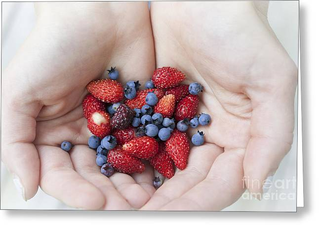 Tiny Photographs Greeting Cards - Hands holding berries Greeting Card by Elena Elisseeva