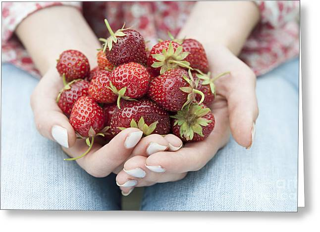 Strawberries Greeting Cards - Hands holding fresh strawberries Greeting Card by Elena Elisseeva